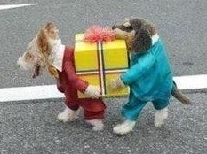 FunnyShare.org - Best dog costume ever funny pics