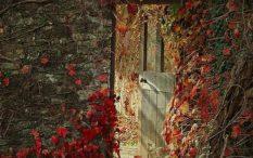 the-door-in-the-wall